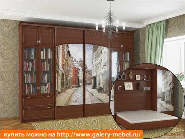 Двуспальная откидная кровать с книжными шкафами